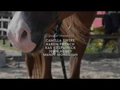 Watch this beautiful new horse documentary for free!