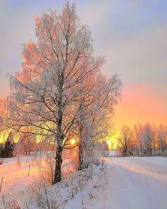 Winter Photography, Landscape Photography, Nature Photography, Photography Reflector, Photography Tips, Photography Degree, Photography Backgrounds, Photography Aesthetic, Photography Tutorials