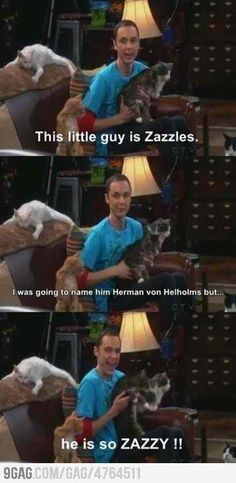 The Big Bang Theory(: every time I name animals or something....this is what Im like. My next puffster of a dog is gonna be named Dumeraugh.