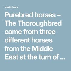 Purebred horses – The Thoroughbred came from three different horses from the Middle East at the turn of the 18th Century.
