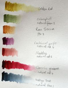 Watercolor painting tips - Photo © Marion Boddy-Evans