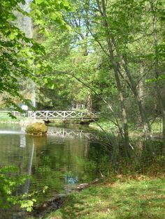 One of the ponds in the Park of Bad Woerishofen, Bavaria