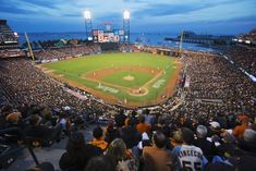 25 Best Things to Do in San Francisco - The Crazy Tourist San Francisco Travel, San Francisco California, California Usa, Northern California, Best Baseball Stadiums, Yosemite National Park, National Parks, National League, Golden Gate Park