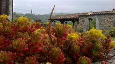 Entrada jardín casarural@fincaelpalacio.com en Torín, Piloña, Asturias
