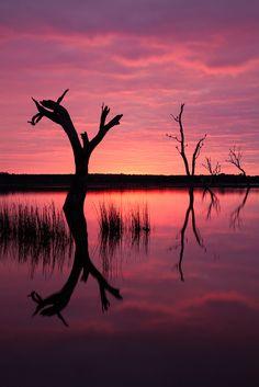 🇦🇺 Sunrise over Lake Fyans (Grampians National Park, VIC, Australia) Sunrise Photography, Landscape Photography, Beautiful World, Beautiful Places, Beautiful Scenery, Driftwood Beach, Rock Pools, Sunset Pictures, Beautiful Sunrise