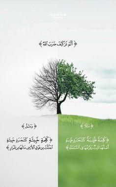 Reading the Holy Quran - - - Beautiful Quran Quotes, Quran Quotes Inspirational, Beautiful Arabic Words, Islamic Love Quotes, Muslim Quotes, Arabic Quotes, Quran Wallpaper, Islamic Quotes Wallpaper, Quran Arabic