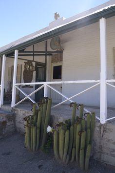 Helen Martin's  Owl House. Nieu Bethesda Owl House, Pergola, Houses, Outdoor Structures, Vacation, Garden, Homes, Vacations, Garten