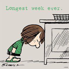 """""""Longest week ever."""""""