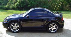 Baby 2004 Mustang