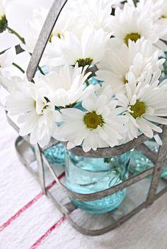 daisies in mason jars in an antique metal milk carrier. love daisies