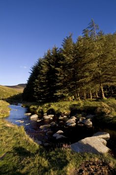 Sally Gap, Wicklow Mountains, Wicklow