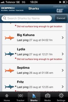 GREAT WHITE SHARK LYDIA z pings again August 27, 2014 OCEARCH Global Shark Tracker powered by CATERPILLAR