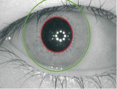 Ashtopus Technologies provides Dual & Single Eye Iris recognition solutions .