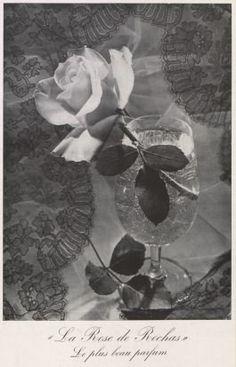 """La Rose"", ""le plus beau parfum"", foi criado em 1949 por Edmond Roudnitska para Rochas."