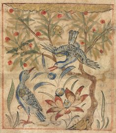 Qualities of Ringdoves (recto): from Manafi al-Hayawan (On the Usefulness of Animals) of Ibn Bakhtishu | Cleveland Museum of Art