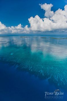 Belize Barrier Reef (facing Belize City) - the drop off from the reef directly at the bottom of photo