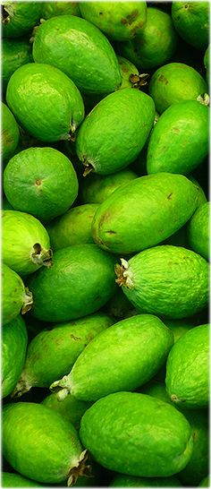 Feijoa Fruit Feijoa is a pulpy and juicy fruit. It is of a chicken egg's size and is of ellipsoid shape. The fruits mature during autumn. The fruit pulp is opaque near the fruit-skin and the inner apart of the pu Exotic Fruit, Tropical Fruits, Exotic Plants, Fruit And Veg, Fruits And Vegetables, Fresh Fruit, Photo Fruit, Pineapple Guava, Colombian Food