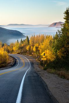 "bluepueblo: "" Sunrise Fog, Quebec, Canada photo via besttravelphotos "" Esta carretera como para perderse."