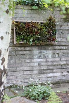 DIY Pallet Vertical Garden: Cocoon Home Design | Botanical and ...
