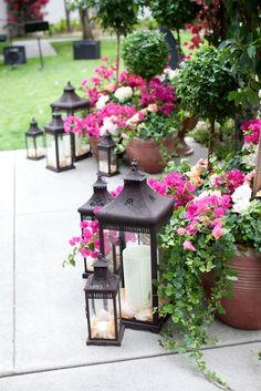 lanterns mixed in with potted flowers add a little ambiance