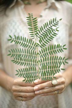 beautiful natural pattern