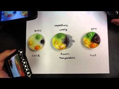 Gobstoppers Experiment