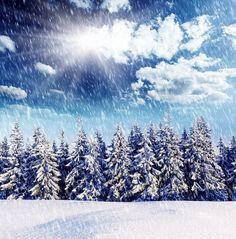 #kar manzaralı duvar kağıtları