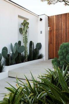 Stark Design - Gold Award, Design 50m2 - 150m2 Garden S, Balcony Garden, Floating Platform, Corten Steel Planters, Small Shrubs, Bottle Trees, Precast Concrete, Outdoor Spaces, Outdoor Decor