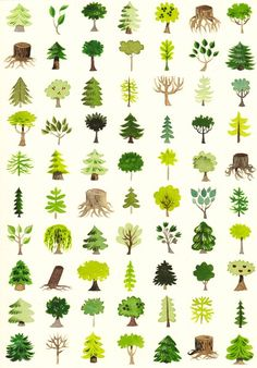 Wallpaper trees