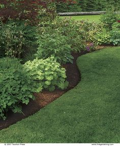 How to Create Perfect Edges for Your Garden Beds and Borders is part of garden Borders Edging - Learn how to create perfect edges for your garden beds and borders in this article from Fine Gardening and keep everything looking neat and clean Garden Yard Ideas, Lawn And Garden, Garden Beds, Garden Shrubs, Garden Edging Ideas Cheap, Spring Garden, Shade Garden, Garden Benches, Herb Garden