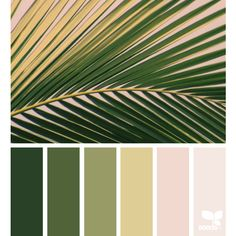 Summer ❤ liked on Polyvore featuring backgrounds, aesthetic, color palettes, effect, green and filler