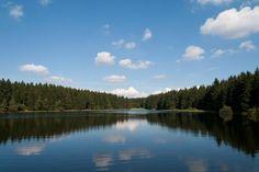 Nassenwieser Teich, Harz  by Andreas Levi