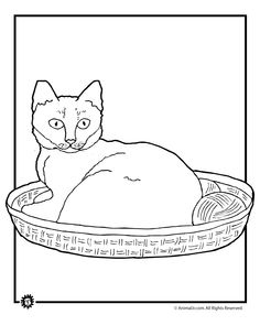 thanksgiving coloring pages printables cats coloring and thanksgiving coloring pages - Coloring Book Yarns
