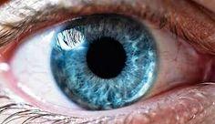 """Résultat de recherche d'images pour """"iridologie"""""""