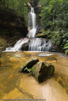 AUSTRALIA, NSW, Katoomba, Blue Mountains National Park. Cascades in Valley of the Waters, near Wentworth Falls, Greater Blue Mountains World Heritage Area