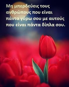 Favorite Quotes, Best Quotes, Life Quotes, Greek Quotes, Health Tips, Inspirational Quotes, Motivation, Words, Pictures