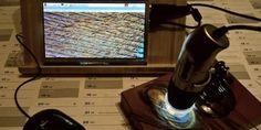 Makro-Aufnahmen machen mit dem Raspberry Pi