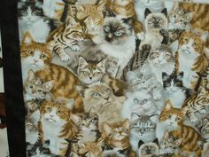 Since this quilt is for the Stokes County Humane Society , fabric featuring dogs and cats seems quite appropriate! I have purchased cute fab. Cat Fabric, Humane Society, Printing On Fabric, Dog Cat, Owl, Quilts, Bird, Cats, Animals