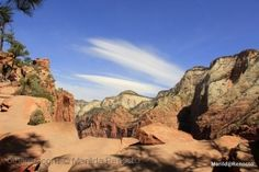 From the Zion's Angels Landing