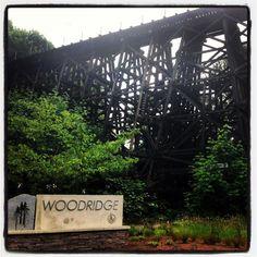 Bellevue - Woodridge Real Estate