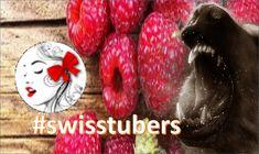 ChuchiChätzli Kanalvorstellung von Schweizer YouTuber und Streamer. Youtuber, Streamers, Swiss Guard, Fiction, Paper Streamers, Leis, Ice Sheet