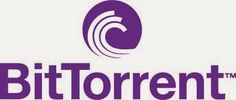 BitTorrent alcanza dos millones de usuarios en 12 meses