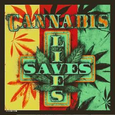 Cannabis does save lives! It helps relieve depression, stops pain, and generally improves your mood. This book has great recipes for easy marijuana oil, delicious Cannabis Chocolates, and tasty Dragon Teeth Mints: MARIJUANA - Guide to Buying, Growing, Harvesting, and Making Medical Marijuana Oil and Delicious Candies to Treat Pain and Ailments by Mary Bendis, Second Edition. �Just $2.99. NOW FREE ON KINDLE UNLIMITED. www.muzzymemo.com