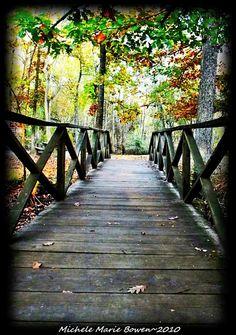 Weymouth Furnace Park, New Jersey