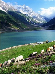 Lake Saif Ul Malook, Pakistan