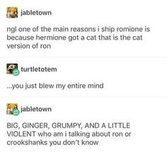Ton Or Cruikshanks? Harry Potter Universal, Harry Potter Fandom, Harry Potter World, Harry Potter Memes, Ron And Hermione, Ginny Weasley, It's My Life, Crookshanks, Avpm