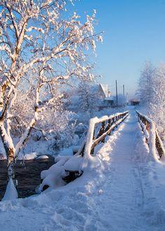 Winter Szenen, I Love Winter, Winter Magic, Winter Travel, Winter Christmas, Snow Photography, Landscape Photography, I Love Snow, Photos Voyages