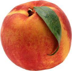 Six fresh cuttings of Elberta peach tree , inches long, Scion for grafting Healthy Fruits, Fruits And Veggies, Vegetables, Healthy Desserts, Healthy Foods, Peach Cobbler Ingredients, Recipe Ingredients, How To Peel Peaches, Grocery Savings Tips