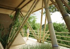 Penda's Low-Impact Modular Bamboo Hotel Reconnects Visitors with Nature one with the birds by penda – Inhabitat - Green Design, Innovation, Architecture, Green Building