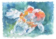 Gold Fish, acuarela sobre papel